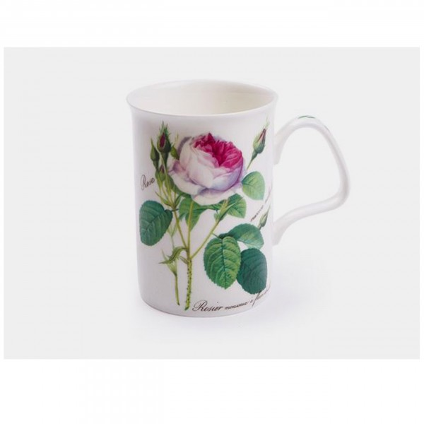 Becher Redoute Roses - Roy Kirkham