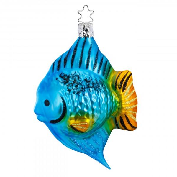 Inge-Glas Anhänger - Doktorfisch - Korallenfisch