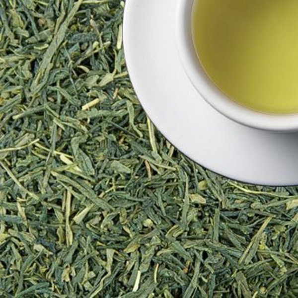 Fancy Sencha - BIO