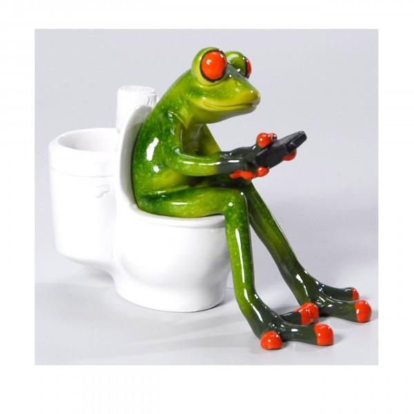 Frosch auf der Toilette