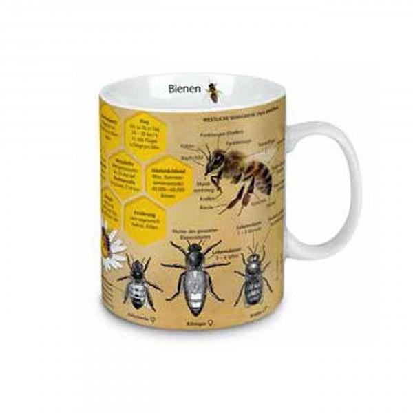 Könitz - Wissensbecher Bienen