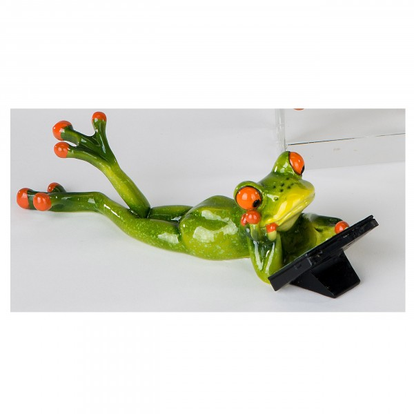 Formano Frosch mit Laptop
