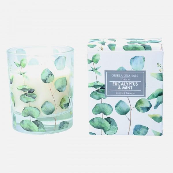 "Gisela Graham - Duftkerze ""Eucalyptus & Mint"" - im Eucalyptus Design"