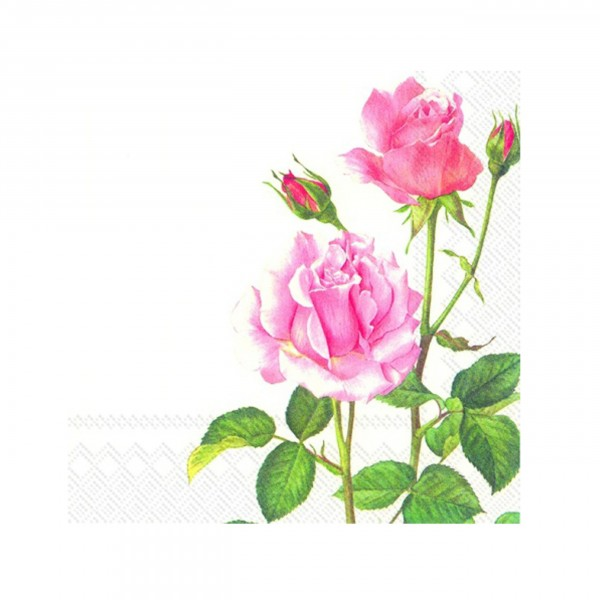 Serviette, A Rose for you