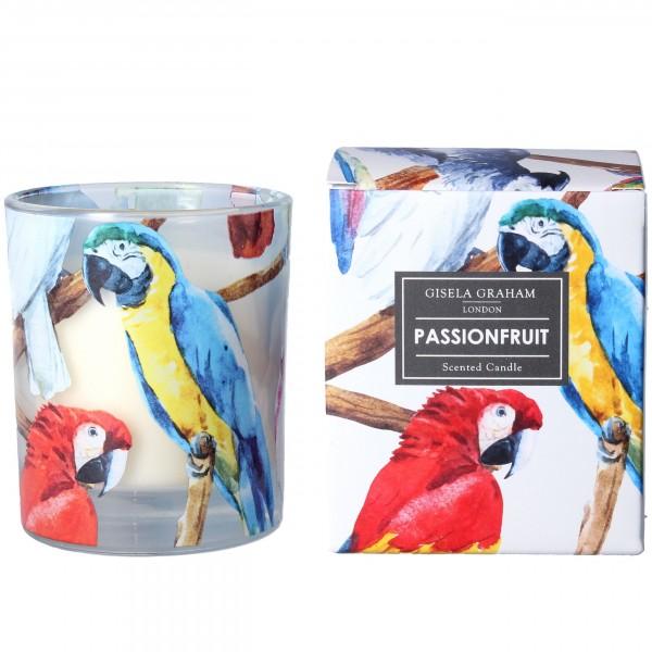 """Gisela Graham - Duftkerze """"Passionfruit"""" - im Ara-Papagei Design"""